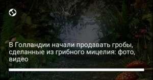 e9893f8bb4ab4725553b6bbab50ac18b